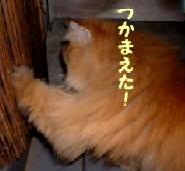 2004.5.13.jpg