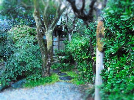 Kamakura11_2
