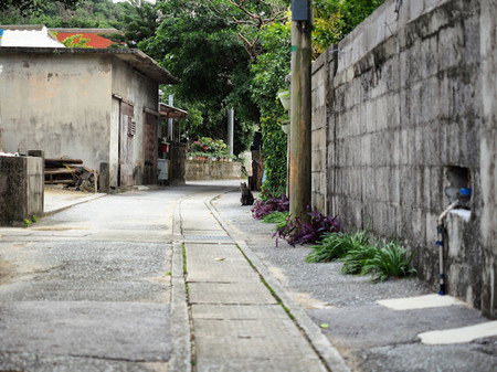 Okinawa36